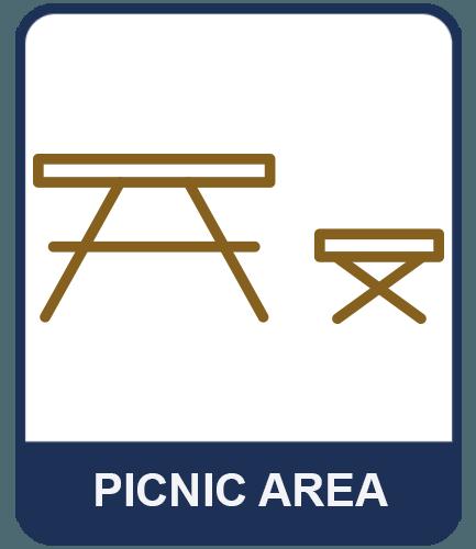 Lake Shasta Picnic